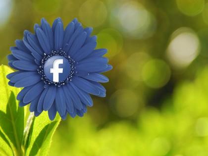 Social-Media Workshop für Gärtner und Floristen