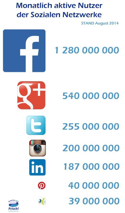 Wieviele Menshcen sind in den jeweiligen Netzwerken pro Monat aktiv?